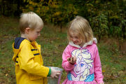 Children collect and plant acorns.