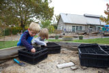 Children planting acorns