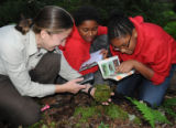 Service environmental education