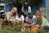 Refuge experience at a community garden