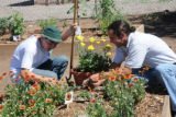 Youth working in a community garden