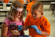 Students learn about bats