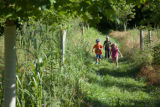 Kids run the trails