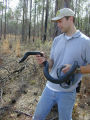 Craig Tenbrink, Dept. of Defense with Eastern indigo snake (Drymarchon corais couperi)