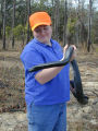 Erin Clark, R4 Fish and Wildlife Biologist with Eastern indigo snake (Drymarchon corais couperi)