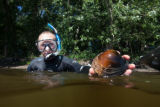 Diver with close-up of freshwater mussel
