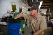 Biologist grows freshwater mussels in hatchery