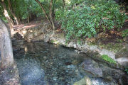 Comal Spring Source