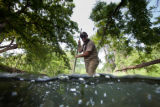 USFWS biologist nets fountain darters in the San Marcos River
