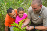 FWS employee shows a young girl (and dad) a Monarch caterpillar
