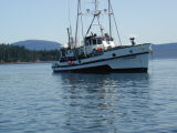 M/V Curlew in Howard Bay, Southeast Alaska