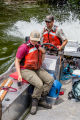 Fishery biologists drive carp into gill nets with noise