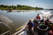 Fisheries biologist searching for invasive carp on the Illinois River