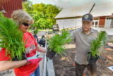 Volunteers and employees plant a monarch garden