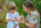 FWS employee shows child tagged monarch
