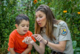 FWS employee and little boy look at tagged monarch