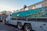 FWS loading juvenile lake trout onto hatchery trucks at Pendills Creek NFH