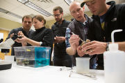 Biologists learn how to grow freshwater mussels
