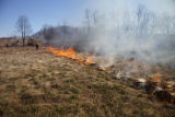Firefighter torching grass in field