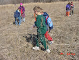 Students Plant Acorns