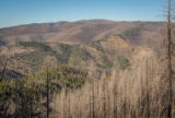 Area of Gila National Forest burned by Whitewater Baldy fire of 2012