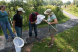 Volunteers with nets and monarch butterflies to be tagged