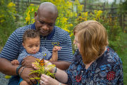 Family with monarch butterfly on goldenrod flowers