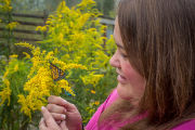 Woman holding monarch butterfly on goldenrod flower