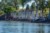 Old wooden pilings along Missouri River near Yankton, South Dakota