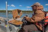 Biologist drives fisheries boat on Missouri River