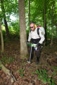 NCTC land management specialist uses motorized injector to treat ash trees