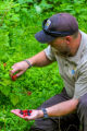 NCTC land management specialist with handful of wineberries and blackberries