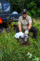 NCTC land management specialist with live-trap, releasing trapped groundhog