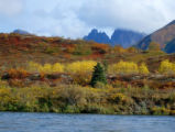 Fall on the Togiak River