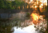 Sunrise at Great Swamp National Wildlife Refuge
