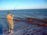 Beach surf fishing