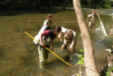 Collecting wild fish for freshwater mussel propagation