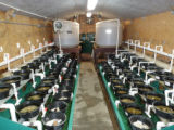 Rearing pan system at the Virginia Department of Game and Inland Fisheries' Aquatic Wildlife...