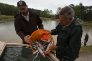 Warm Springs hatchery staff capture channel catfish