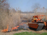 Prescribed burn at Prime Hook National Wildlife Refuge