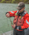 USFWS Fisheries crew baiting lines for lake sturgeon