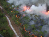 Prescribed fire by aerial ignitions