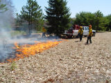 WUI prescribed fire