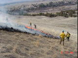 National Bison Range prescribed burn