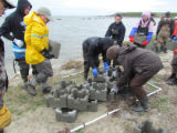 Refuge staff and volunteers and The Nature Conservancy volunteers learn how to build oyster castles