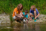 Family fishing, mother nets rainbow trout