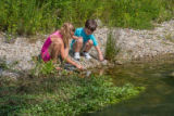 Kids playing in stream edge