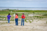 Visitors at shorebird nesting area