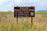 Blackwater NWR sign in field