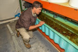 FWS mussel biologist, Jonathan Wardell, examines equipment